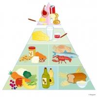Kostcirkel mat
