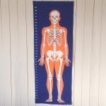Mätvepa med skelettmönster